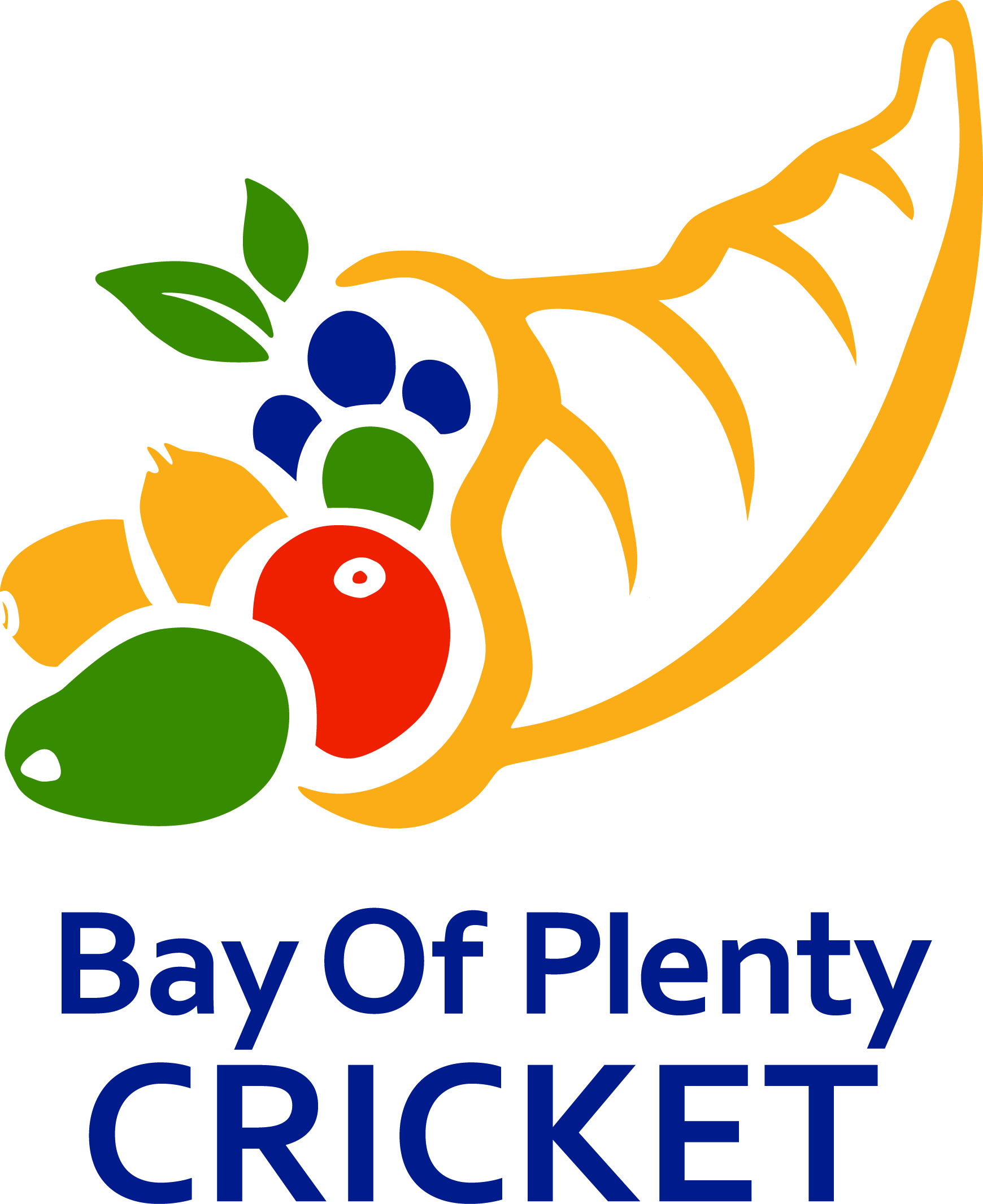 Bay of Plenty Cricket Announce Restructure