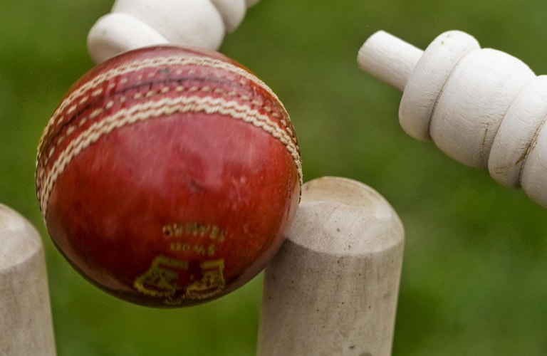 Behind the Stumps with Don Warner